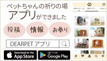 ディアペット アプリ