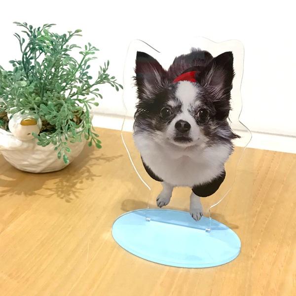 ペットの写真で作るアクリルフィギュア
